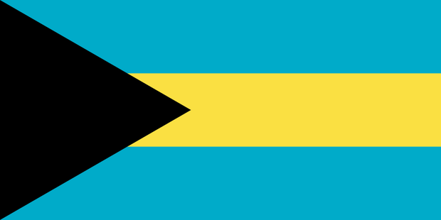 fdp union AfD Bahamas-koalition