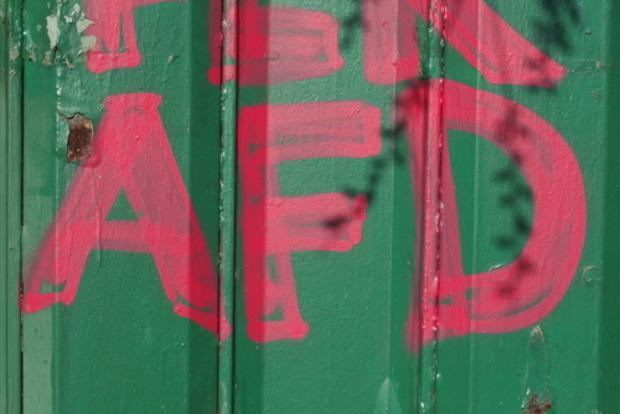 angela-merkel AfD