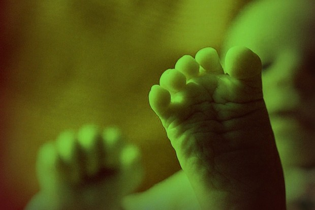 ethik praeimplantationsdiagnostik designerbaby bundesgerichtshof