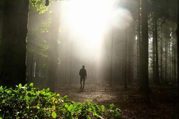 umweltschutz naturschutz tierschutz artenvielfalt biodiversitaet