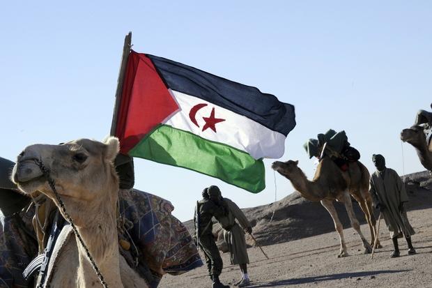 nato arabischer-fruehling revolution algerien