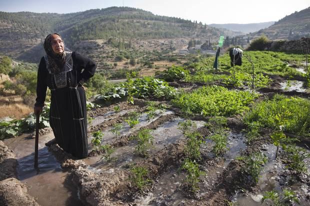 israel umwelt palaestina nahost-konflikt dialog
