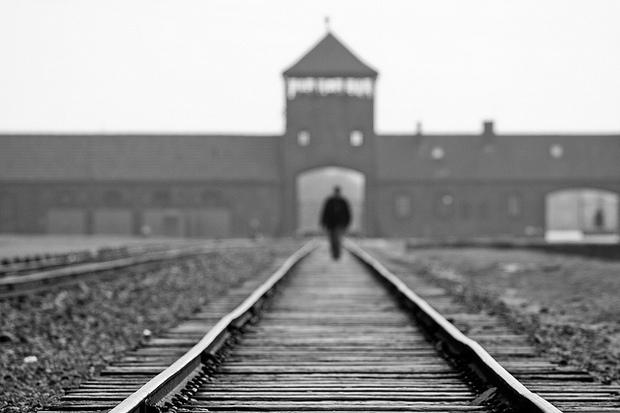 immigration adolf-hitler nazi auschwitz identity holocaust